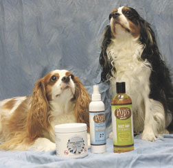 Natural pest products available at Earth Angels Veterinary Hospital