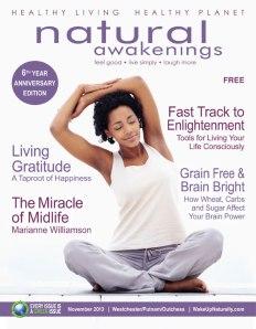 Cover-Nov-13